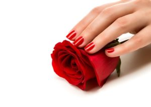 Woman hands with manicure red nails closeup and rose